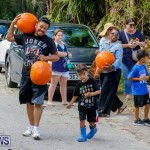 J&J Produce Pumpkin Picking Bermuda, October 14 2017_6029
