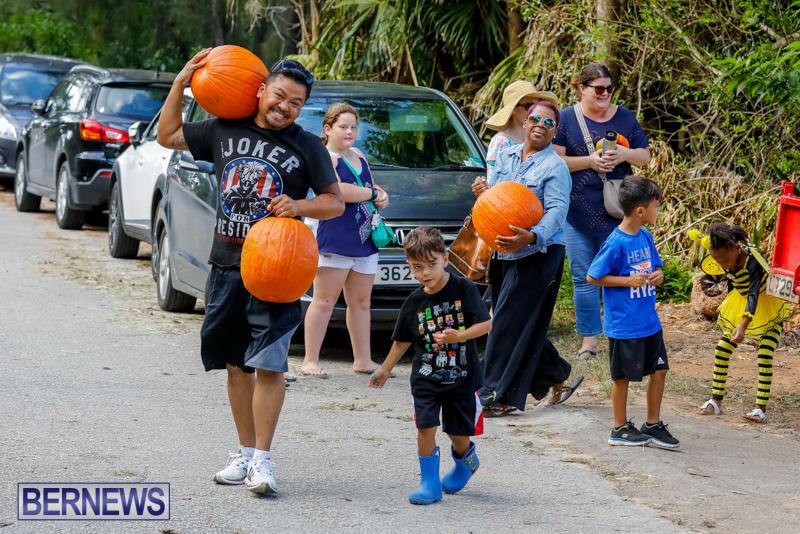 JJ-Produce-Pumpkin-Picking-Bermuda-October-14-2017_6029