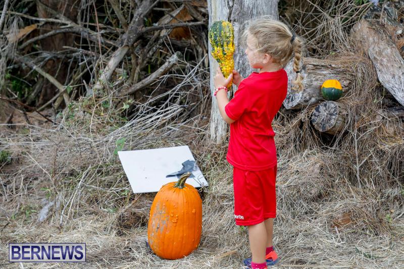 JJ-Produce-Pumpkin-Picking-Bermuda-October-14-2017_6045