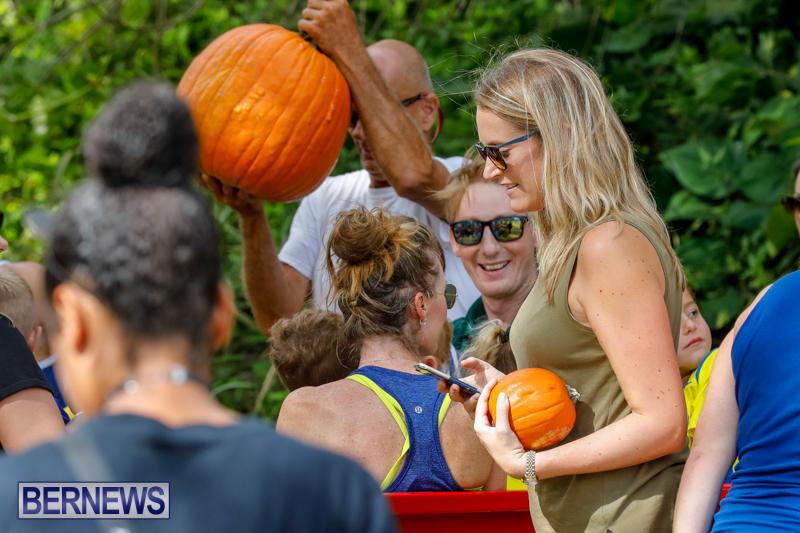 JJ-Produce-Pumpkin-Picking-Bermuda-October-14-2017_6052
