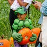 J&J Produce Pumpkin Picking Bermuda, October 14 2017_6113