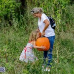 J&J Produce Pumpkin Picking Bermuda, October 14 2017_6161