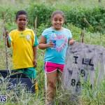 J&J Produce Pumpkin Picking Bermuda, October 14 2017_6172