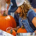 J&J Produce Pumpkin Picking Bermuda, October 14 2017_6187