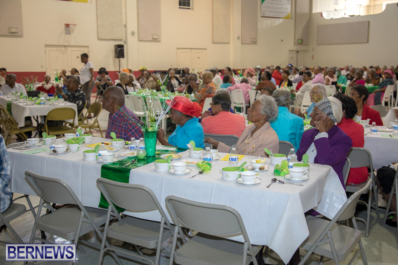 PLP Seniors Tea Bermuda Oct 29 2017 (13)
