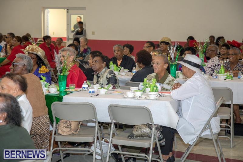 PLP Seniors Tea Bermuda Oct 29 2017 (15)