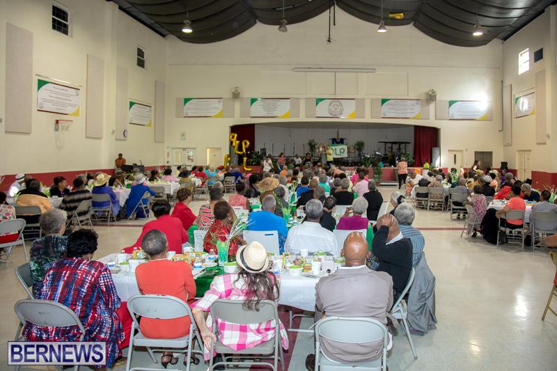PLP Seniors Tea Bermuda Oct 29 2017 (17)