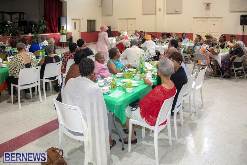 PLP Seniors Tea Bermuda Oct 29 2017 (3)