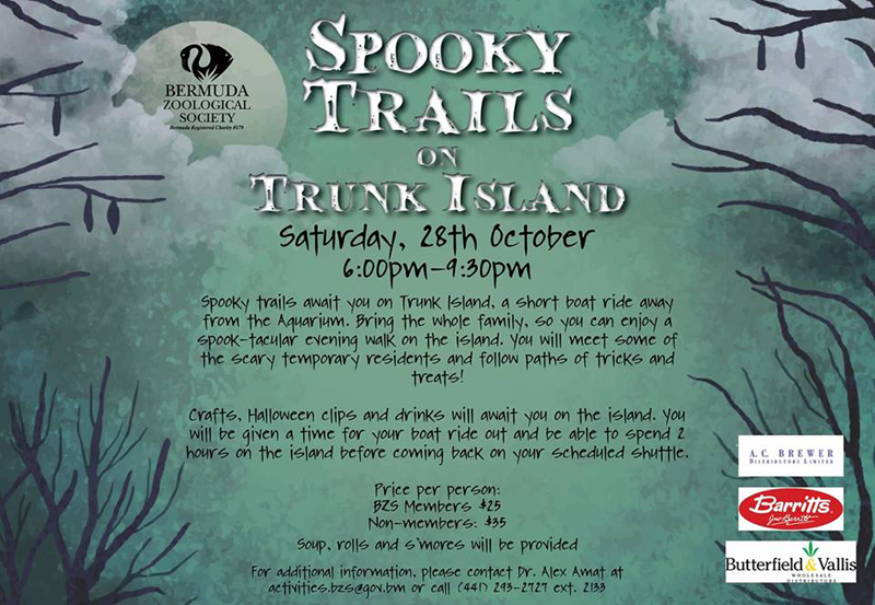 Spooky Trails on Trunk Island Bermuda Oct 2017