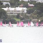 Bermuda Optimist Championship Nov 15 2017 (1)