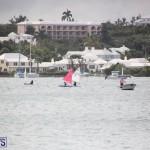 Bermuda Optimist Championship Nov 15 2017 (13)
