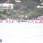 Bermuda Optimist Championship Nov 15 2017 (5)