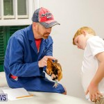 Bermuda Poultry Fanciers Society's Bantam Jamboree, November 11 2017_6490