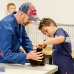 Bermuda Poultry Fanciers Society's Bantam Jamboree, November 11 2017_6493