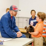 Bermuda Poultry Fanciers Society's Bantam Jamboree, November 11 2017_6498