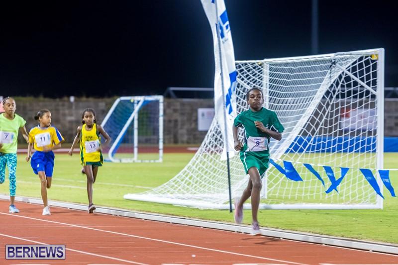 Bermuda-Running-Nov-25-2017-12