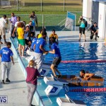 Cardboard Boat Challenge Bermuda, November 16 2017_9044