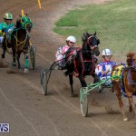 Harness Pony Racing Bermuda, November 13 2017_7431