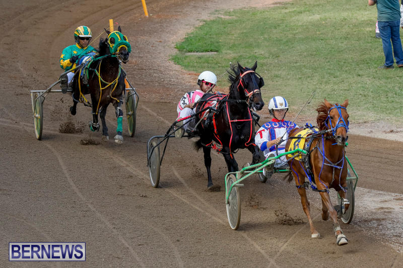 Harness-Pony-Racing-Bermuda-November-13-2017_7431