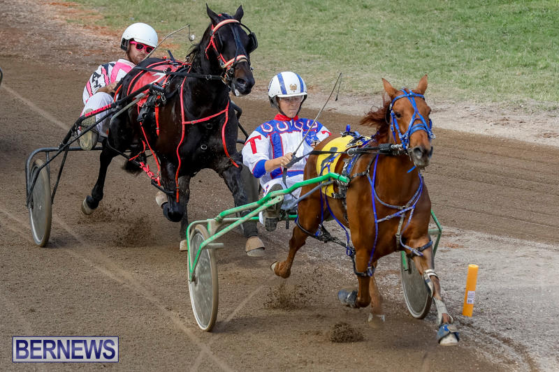 Harness-Pony-Racing-Bermuda-November-13-2017_7432