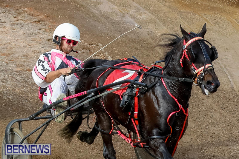 Harness-Pony-Racing-Bermuda-November-13-2017_7436