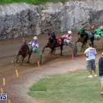 Harness Pony Racing Bermuda, November 13 2017_7439