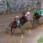 Harness Pony Racing Bermuda, November 13 2017_7441