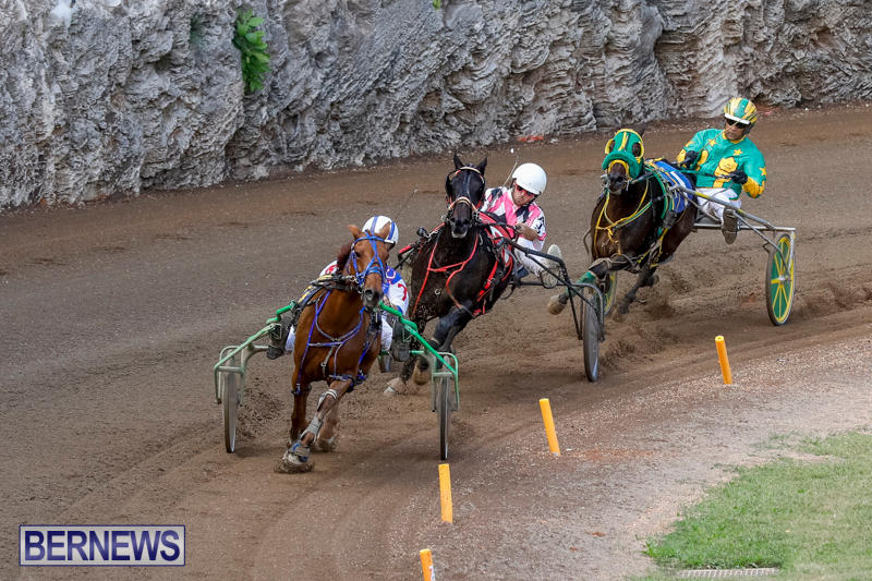 Harness-Pony-Racing-Bermuda-November-13-2017_7441