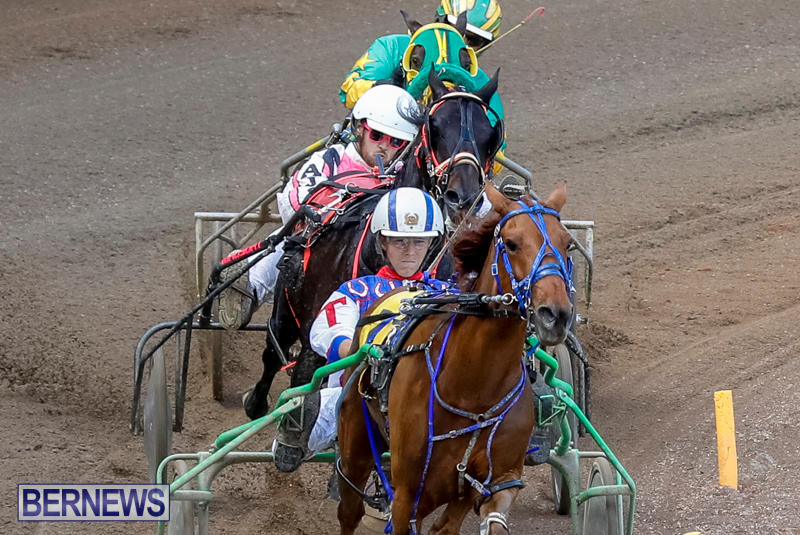 Harness-Pony-Racing-Bermuda-November-13-2017_7443