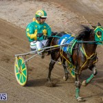 Harness Pony Racing Bermuda, November 13 2017_7453