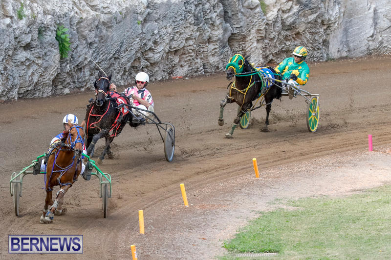 Harness-Pony-Racing-Bermuda-November-13-2017_7456