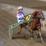 Harness Pony Racing Bermuda, November 13 2017_7465