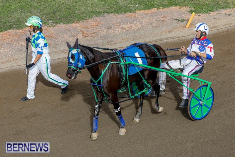 Harness-Pony-Racing-Bermuda-November-13-2017_7482