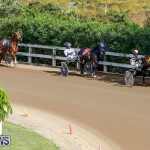 Harness Pony Racing Bermuda, November 13 2017_7488