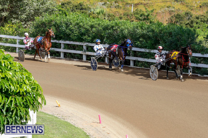 Harness-Pony-Racing-Bermuda-November-13-2017_7488