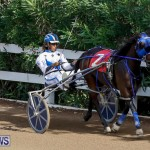 Harness Pony Racing Bermuda, November 13 2017_7489