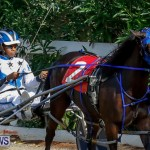 Harness Pony Racing Bermuda, November 13 2017_7493