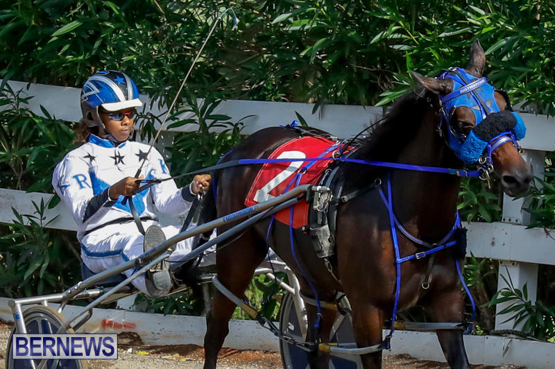 Harness-Pony-Racing-Bermuda-November-13-2017_7493