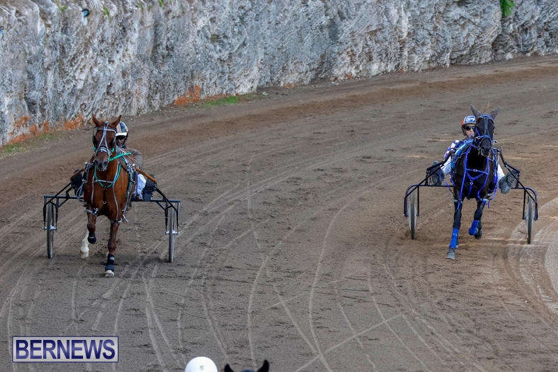 Harness-Pony-Racing-Bermuda-November-13-2017_7501