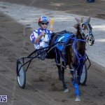 Harness Pony Racing Bermuda, November 13 2017_7506