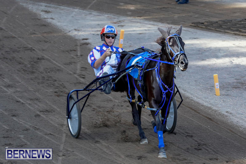 Harness-Pony-Racing-Bermuda-November-13-2017_7506