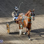 Harness Pony Racing Bermuda, November 13 2017_7509