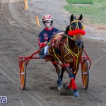Harness Pony Racing Bermuda, November 13 2017_7525