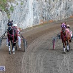 Harness Pony Racing Bermuda, November 13 2017_7533