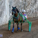 Harness Pony Racing Bermuda, November 13 2017_7545