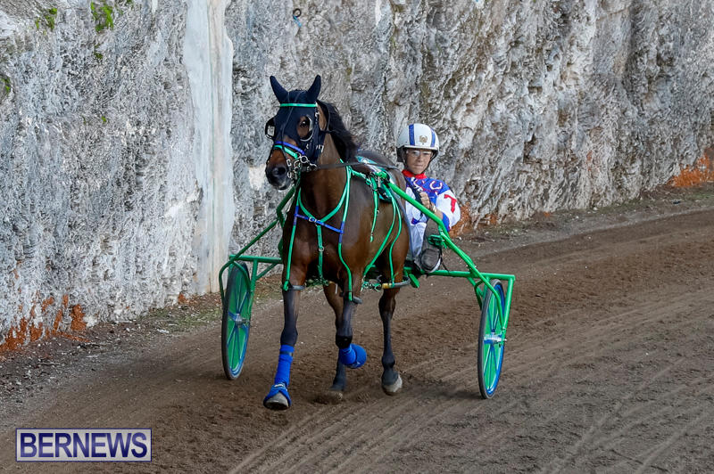 Harness-Pony-Racing-Bermuda-November-13-2017_7545