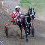 Harness Pony Racing Bermuda, November 13 2017_7552