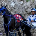 Harness Pony Racing Bermuda, November 13 2017_7558