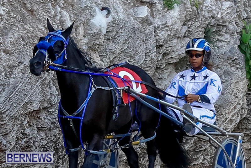 Harness-Pony-Racing-Bermuda-November-13-2017_7558