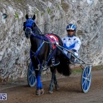 Harness Pony Racing Bermuda, November 13 2017_7559